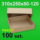 Pudełko wieczkowe 310x250x120 P-100 szt.