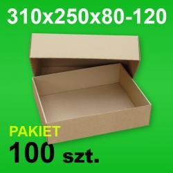 Pudełko wieczkowe 310x250x80-120 P-100 szt.
