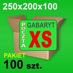 Karton 250x200x100 XS P-100 szt.