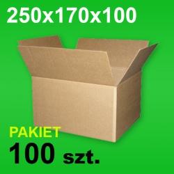 Karton 250x170x100 P-100 szt.